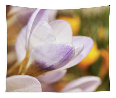 Tapestry featuring the photograph Crocus by Whitney Goodey