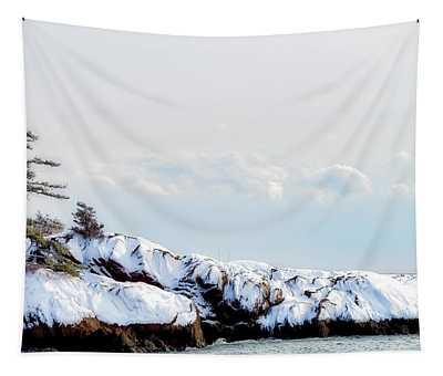 Crow Island, Winter Light Tapestry