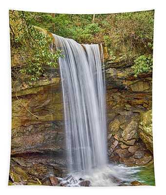 Cucumber Falls Tapestry