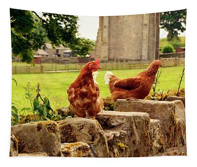 Cumbria,  Shap Abbey, Two Chickens. Tapestry