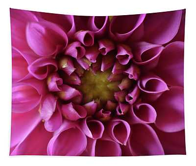 Curled Up Tapestry