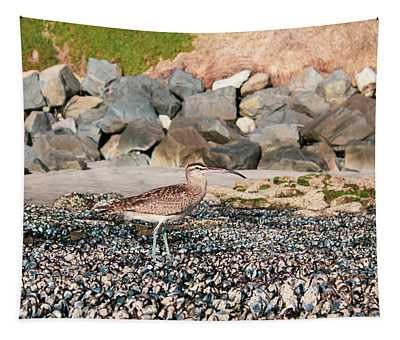 Curlew Tapestry