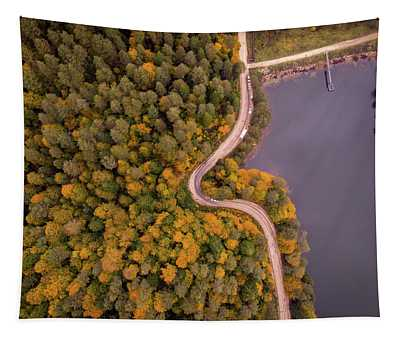 Curved Road At Lakeside Tapestry