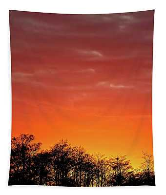 Cypress Swamp Sunset 4 Tapestry