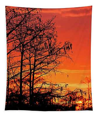 Cypress Swamp Sunset Tapestry