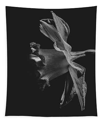 Daffodil Side View Black And White Tapestry