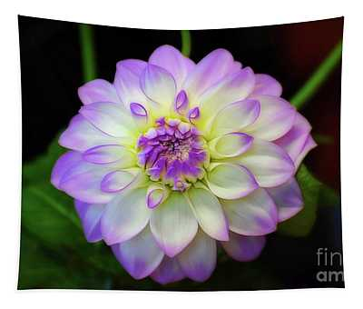 Tapestry featuring the photograph Dahlia Eveline by Patti Whitten