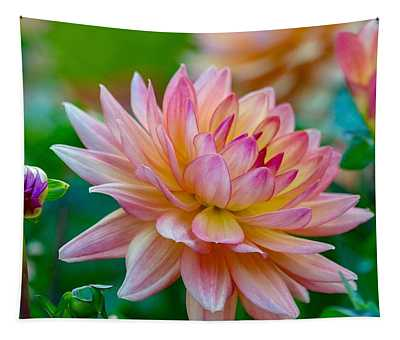 Dahlia Splendor Tapestry