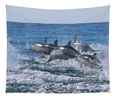 Dancing Dolphins Tapestry