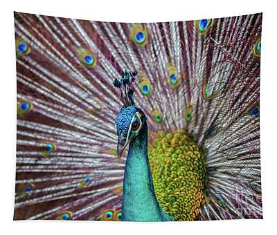 Dancing Indian Peacock  Tapestry