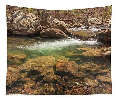 Daniel Creek At Cloudland Canyon State Park Tapestry