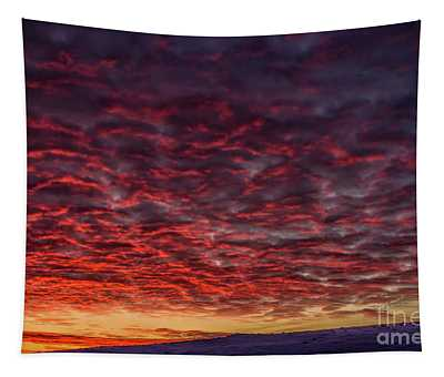 Dawn Of A Cold Day Tapestry