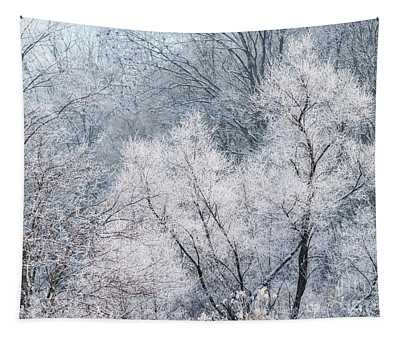 December Hoarfrost Tapestry