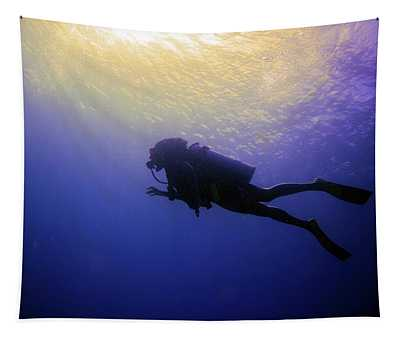 Deep Ascent Tapestry