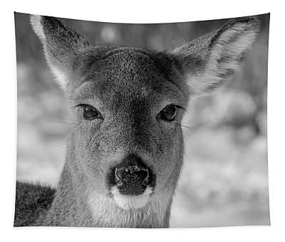 Deer In Black  White Tapestry