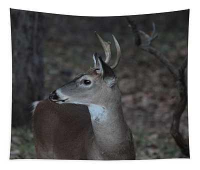Deer In Twilight 3657 Tapestry
