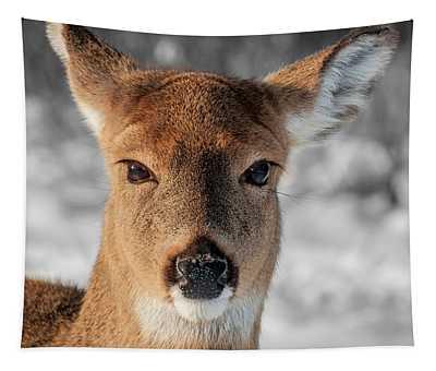 Deer Portrait Tapestry