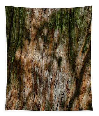 Detail Of Bark On Huge  Tree Tapestry
