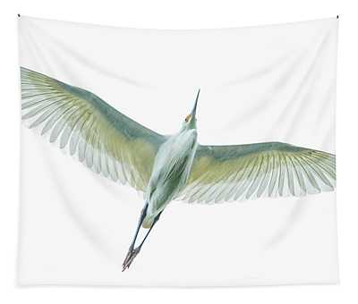 Dimorphic Egret Egretta Dimorpha Tapestry