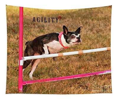 Doggie Agility  Tapestry