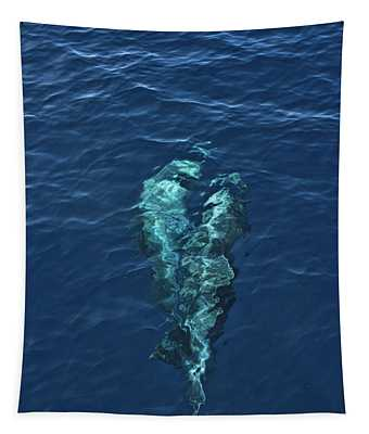 Dolphins At Play 2 Tapestry