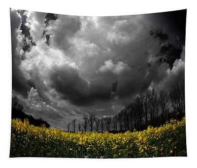 Dramatic Sky Tapestry