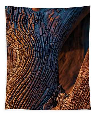 Driftwood At Sunset Tapestry