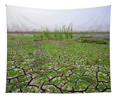 Dry Duck Pond Tapestry