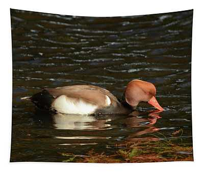 Duck On Water Tapestry