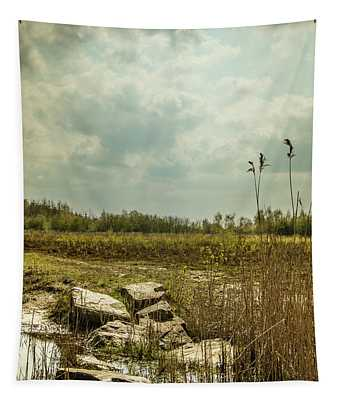 Tapestry featuring the photograph Dutch Landscape. by Anjo Ten Kate