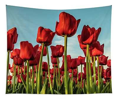Tapestry featuring the photograph Dutch Red Tulip Field. by Anjo Ten Kate