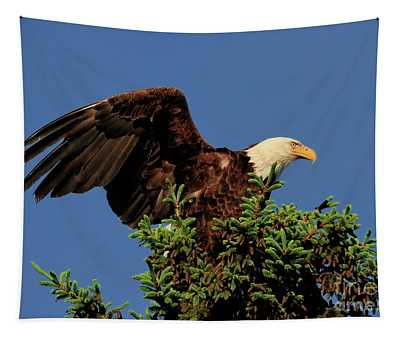 Eagle In Treetop Tapestry