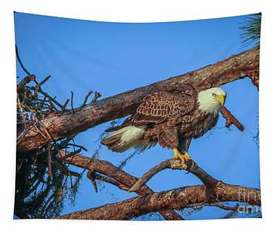 Eagle Perch Tapestry