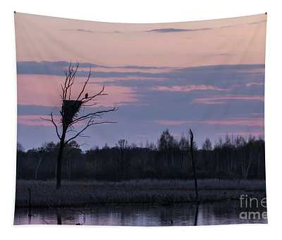Eagle Sunset Tapestry