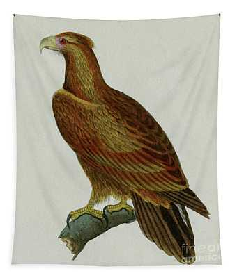 Eagle, 1830 Engraving For Complete Works Of French Naturalist Comte De Buffon - 2 Tapestry
