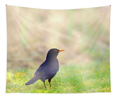 Early Bird Tapestry