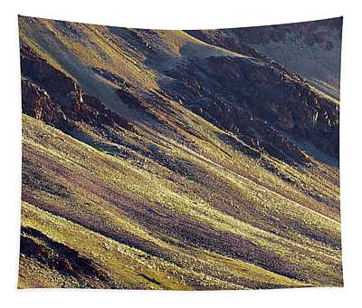 Tapestry featuring the photograph Early Morning Light On The Hillside In Sarchu by Whitney Goodey