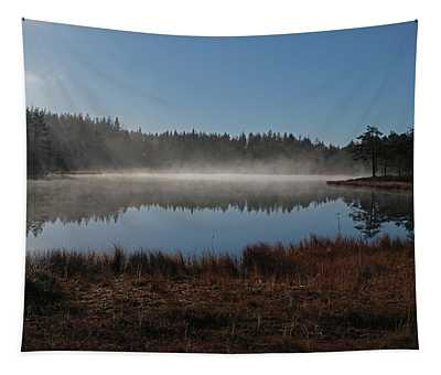 Early Morning Tapestry