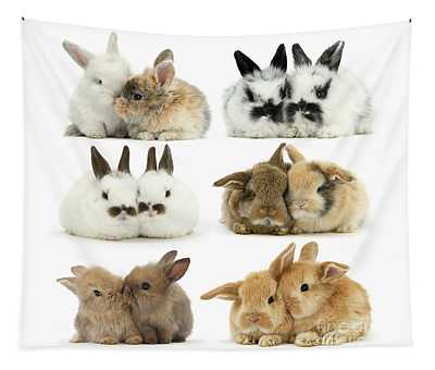Easter Love Bunnies Tapestry