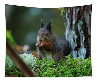 Eating Squirrel Tapestry