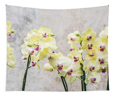 Elegant Romantic Cream Orchids Tapestry