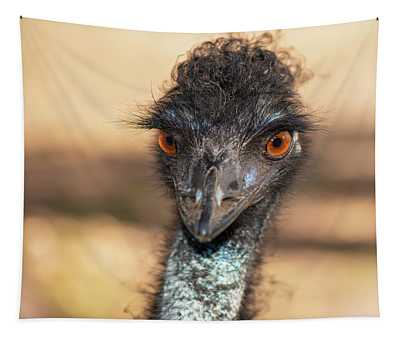 Emu By Itself Outdoors During The Daytime. Tapestry