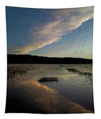 Evening Flight Tapestry