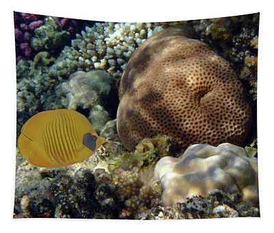 Exciting And Beautiful Red Sea World 2 Tapestry