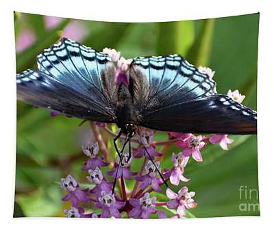 Eye Level With A Red-spotted Purple Tapestry
