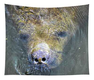 Face Of The Manatee Tapestry