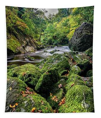 Fairy Glen Snowdonia Tapestry