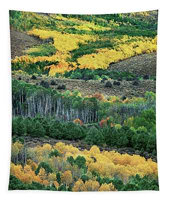 Fall Color In The Eastern Sierras California Tapestry