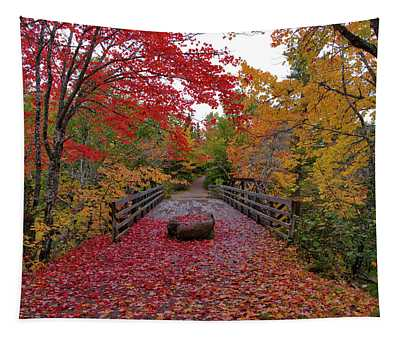 Fall Colors At The Cabot Trail Tapestry