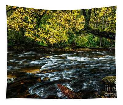 Fall Day On Cranberry River Tapestry